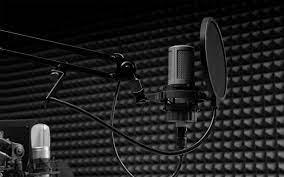 Rent a Studio mic